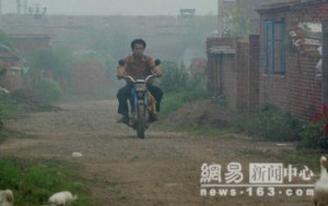 La prima immagine contenuta nel pdf polli cinesi - bufala